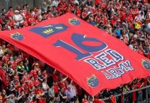 munster supporters